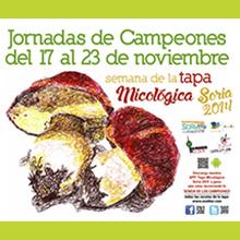 Cartel Jornadas Campeones 2014